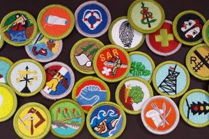 Recommended Merit Badge Process