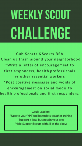 Weekly Scout Challenge